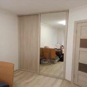 Дверь ЛДСП + Зеркало