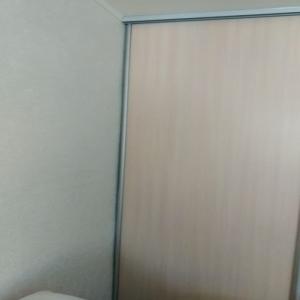 Дверь ЛДСП + Зеркало серебро