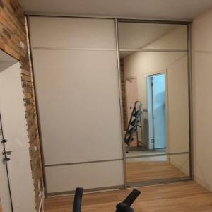Дверь ЛДСП/МДФ EGGER + зеркало