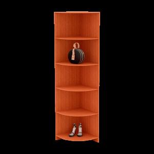Модуль 5 (полки + ящики)